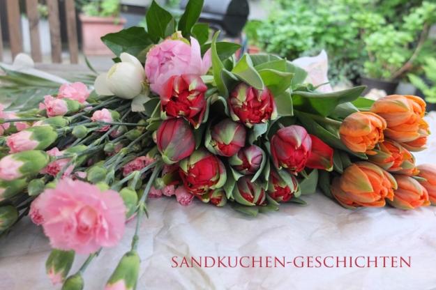 tulpen-und-nelken