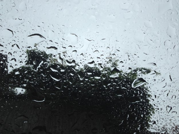 regen-auf-dem-panoramaglasdach