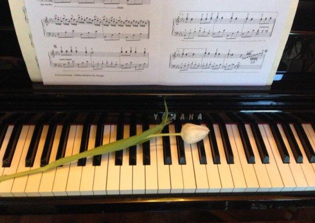 klavier-mit-tulpe.jpg