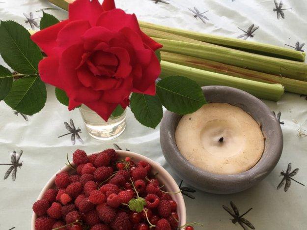 himbeeren-an-rosen.jpg