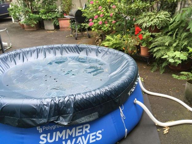 hof-pool